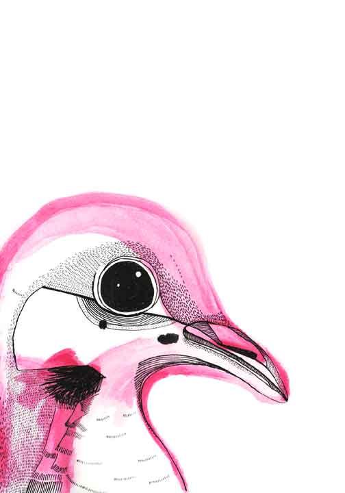 1-bird2